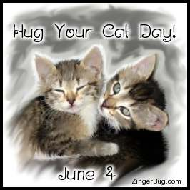 Hug your Cat Day greetings, comments, glitters and graphics